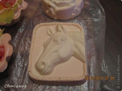Конь, аль лошадь..... фото 3