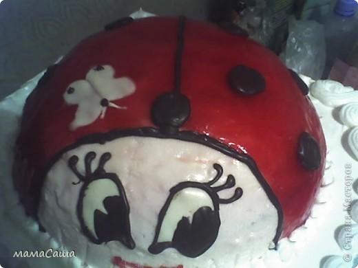 Январь в нашей семье богат на Дни рождения.  Это тортик мужу на ДР. фото 4