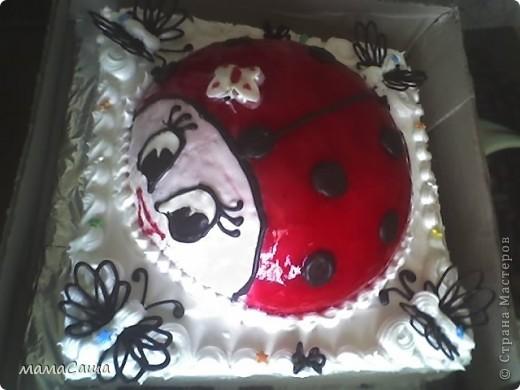 Январь в нашей семье богат на Дни рождения.  Это тортик мужу на ДР. фото 3