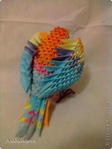 Мой попугай... Мамин самый любимый из всего, что я пока собрала. фото 3