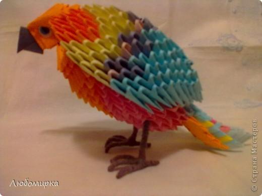 Мой попугай... Мамин самый любимый из всего, что я пока собрала. фото 1