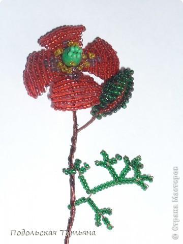 Поделка изделие 8 марта День матери День рождения День учителя Бисероплетение Цветок из бисера Мак Бисер.