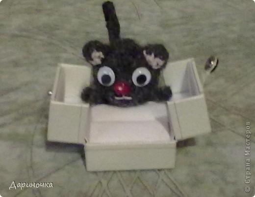 Черный котёнок :) фото 1
