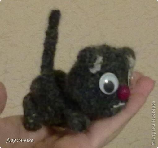 Черный котёнок :) фото 2