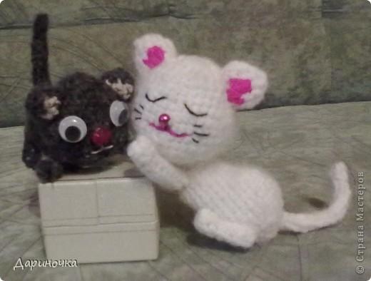Черный котёнок :) фото 7