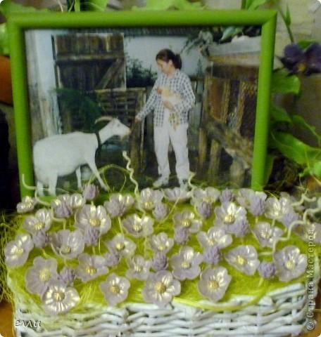 Сиреневая полянка. фото 3