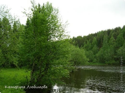 Когда ты идёшь по тропинке лесной, Вопросы тебя обгоняют гурьбой. фото 6