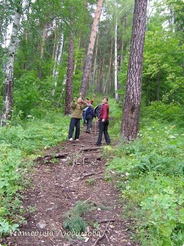 Когда ты идёшь по тропинке лесной, Вопросы тебя обгоняют гурьбой. фото 10