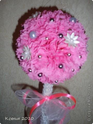 Розовая  мечта фото 3