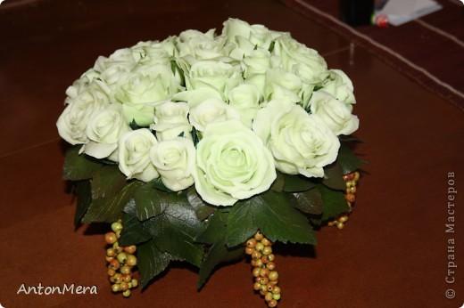 Роза - королева цветов фото 1