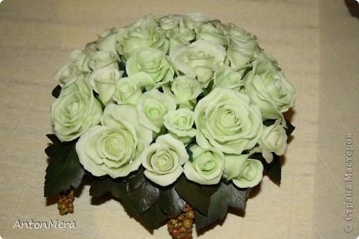 Роза - королева цветов фото 2