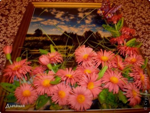 Вот-такие цветочки распустились  у меня на лугу в середине зимы. фото 3