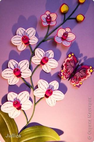 И снова орхидея! На этот раз белая! :) фото 3