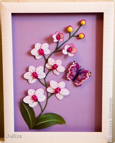И снова орхидея! На этот раз белая! :) фото 6
