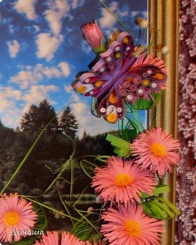 Вот-такие цветочки распустились  у меня на лугу в середине зимы. фото 2