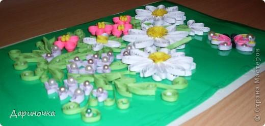 Цветочная поляна :) фото 2