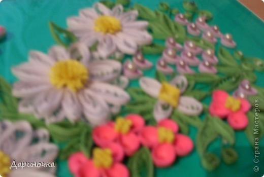 Цветочная поляна :) фото 4