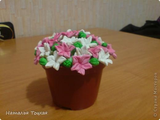 Спасибо автору за идею http://stranamasterov.ru/node/128387?c=favorite фото 1