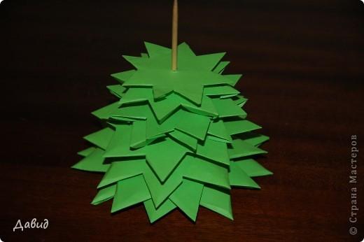 Зелёная ёлка фото 1