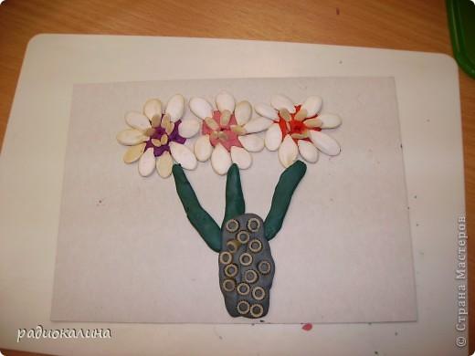 На прошлом занятии мы лепили вазу с цветами. Для цветов делали серединки из пластилина и по краю втыкали семена тыквы, кабачков , подсолнечника. Это работа Надюши. фото 1