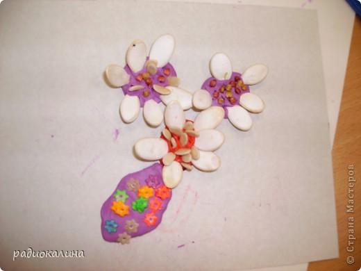 На прошлом занятии мы лепили вазу с цветами. Для цветов делали серединки из пластилина и по краю втыкали семена тыквы, кабачков , подсолнечника. Это работа Надюши. фото 4