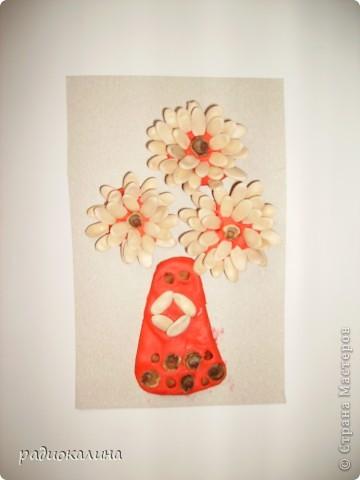 На прошлом занятии мы лепили вазу с цветами. Для цветов делали серединки из пластилина и по краю втыкали семена тыквы, кабачков , подсолнечника. Это работа Надюши. фото 5