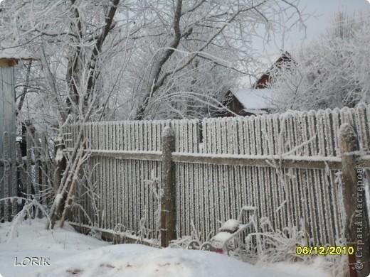 В этот день было так красиво на улице, что я не удержалась и стала фотографировать. Ближе к обеду снег осыпался и деревья стали не так нарядны.  фото 4