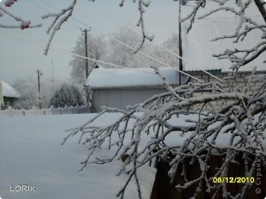 В этот день было так красиво на улице, что я не удержалась и стала фотографировать. Ближе к обеду снег осыпался и деревья стали не так нарядны.  фото 5