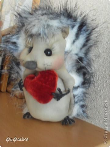 Милый романтичный и чуть-чуть влюбленный ежик.))) фото 1