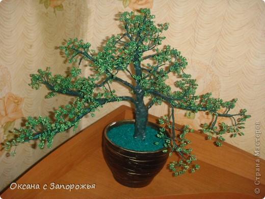 Эти деревья были сделаны еще в декабре - некогда было их выставить.  фото 1