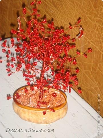 Эти деревья были сделаны еще в декабре - некогда было их выставить.  фото 3