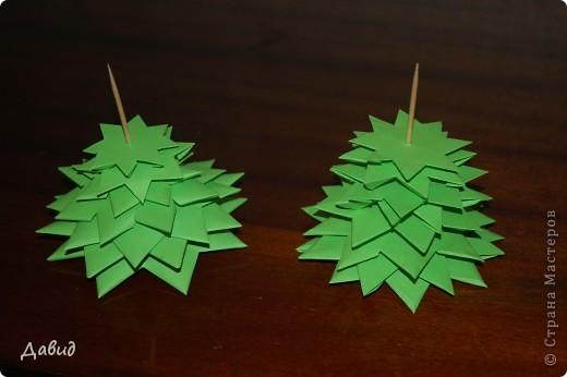Зелёная ёлка фото 2