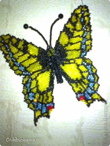 Бабочка Махаон фото 1