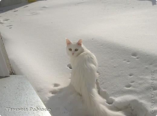 ... опять фиалки))) Попросили слепить именно белые для подарка. фото 8