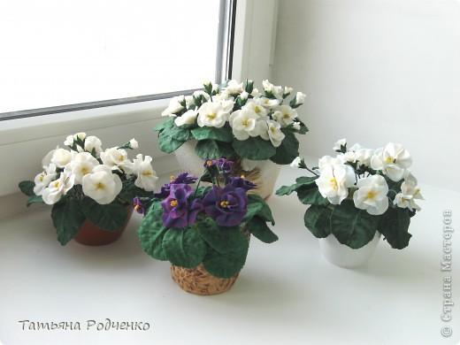 ... опять фиалки))) Попросили слепить именно белые для подарка. фото 2