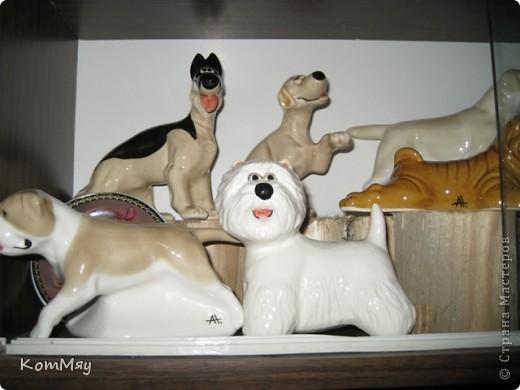 А это часть коллекции собак моей дочери фото 2