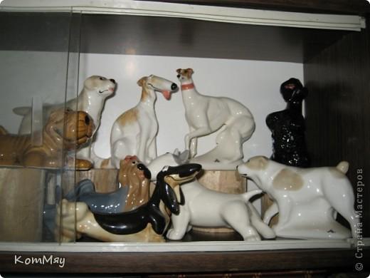 А это часть коллекции собак моей дочери фото 3