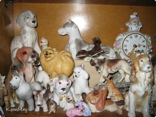 А это часть коллекции собак моей дочери фото 5