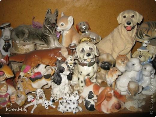 А это часть коллекции собак моей дочери фото 7