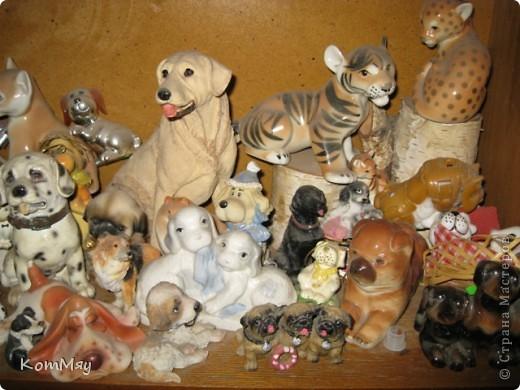 А это часть коллекции собак моей дочери фото 8