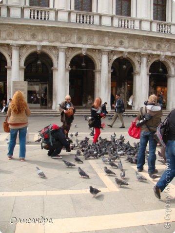 Мы едем в Венецию. Это была моя мечта ,я думала,что несбыточная... На этом катере  домчались туда за 20 минут и 7,5 евро... фото 6