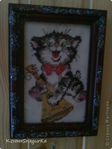 Котик-музыкант=)