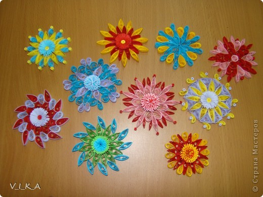 Мои цветочки! фото 1