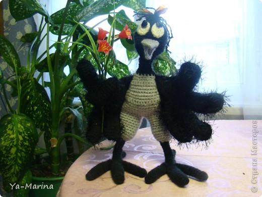 Влюбчивая ворона фото 1
