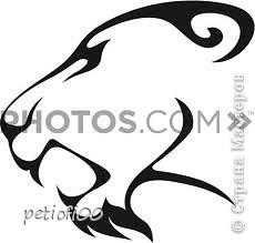 Тигр фото 4