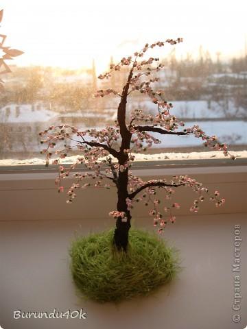Весна фото 1
