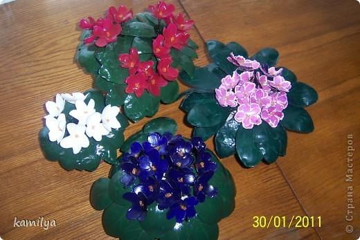 После изготовления шкатулок,осталось очень много горлышек и донышек от пластиковых бутылок,у тут родилась идея сделать комнатные цветочки.Вот что из этого вышло.Попробую вкратце объяснить,как я это делала. фото 1