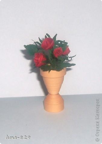 Цветы фото 1