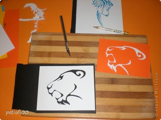 Тигр фото 3