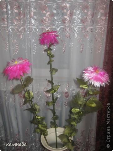 Цветы и листья выжигала из органзы,выжигательным прибором. фото 1
